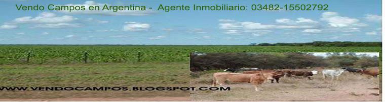 Campos en Venta en Argentina Comprar Campo en Argentina