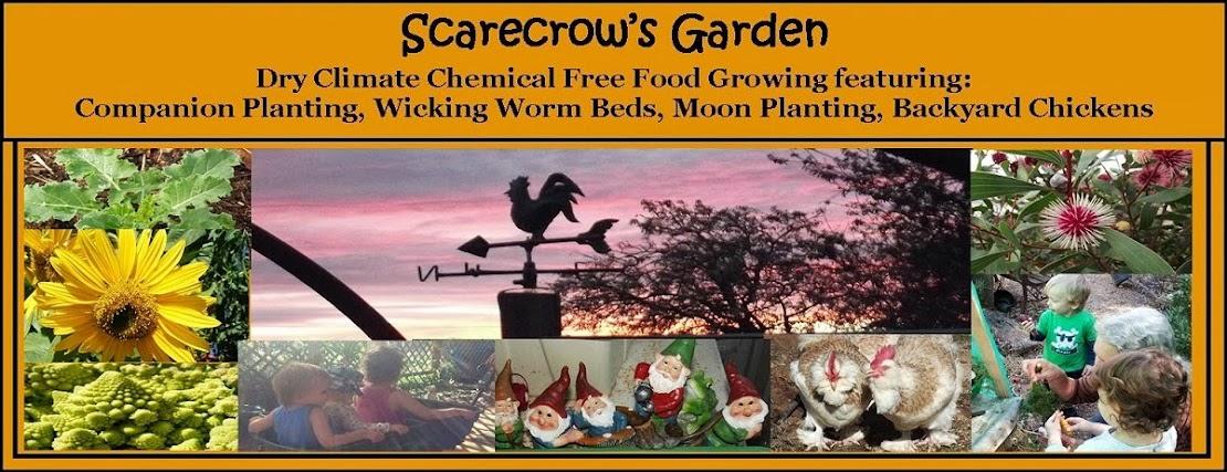 Scarecrow's Garden