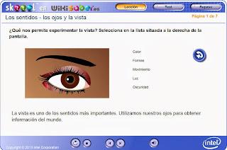 http://www.skoool.es/content/science/eyes_and_seeing/index.html