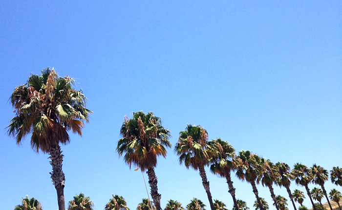 CADIZ-CALIFORNIA-CADIZFORNIA-TALESTRIP