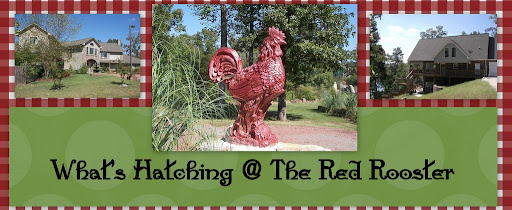 What's Hatching @ The Red Rooster