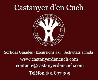 CASTANYER D'EN CUCH