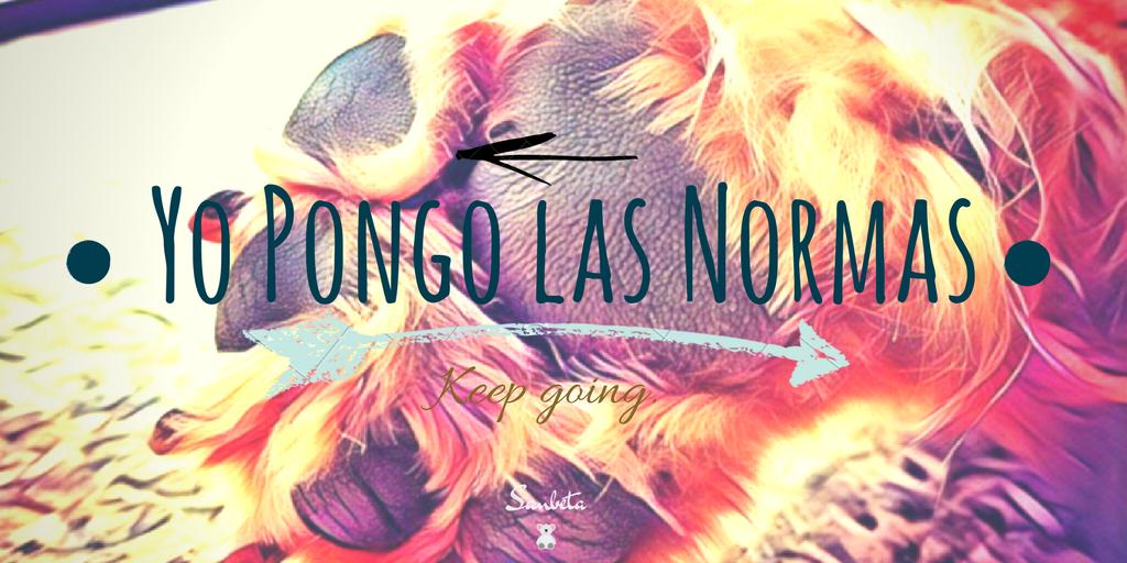 Yo Pongo Las Normas