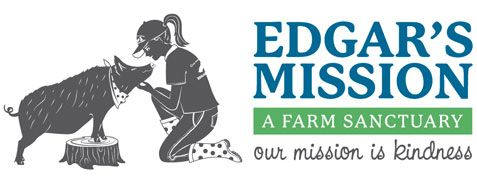 Edgar's Mission