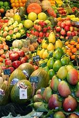 10 Completos Alimentos Perder Peso