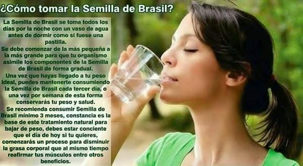 Resultado de imagen para beneficios de la semilla de brasil