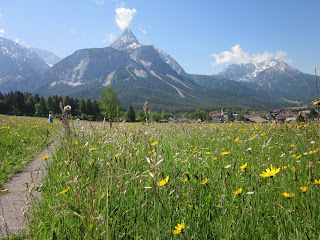 A typical scene of the Alps in Ehrwald Austria
