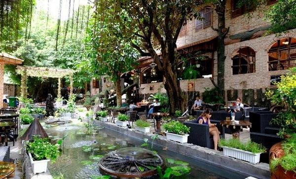 Image result for cà phê sân vườn