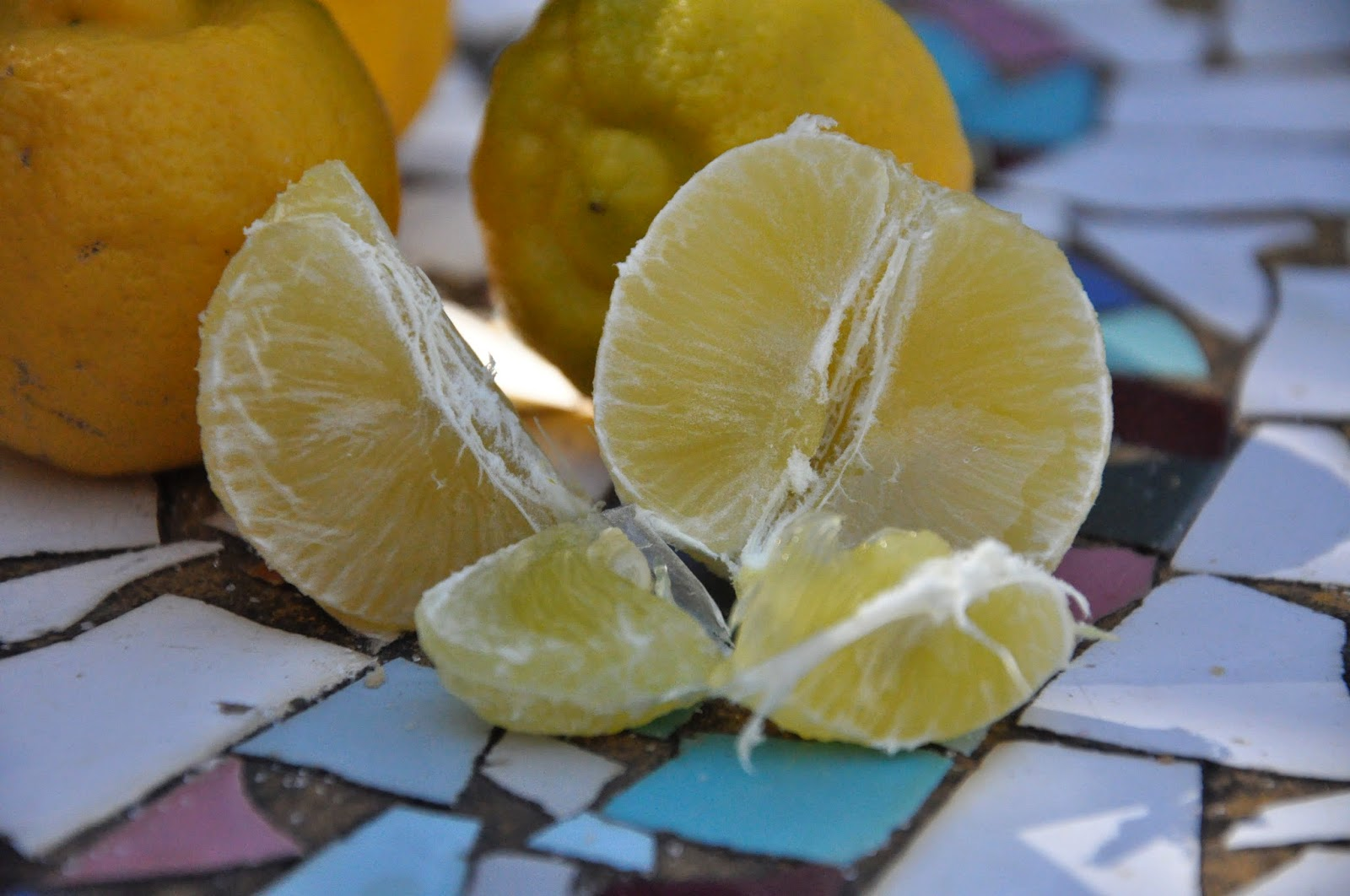 Sweet Limes (Lima Dulce) Information and Facts