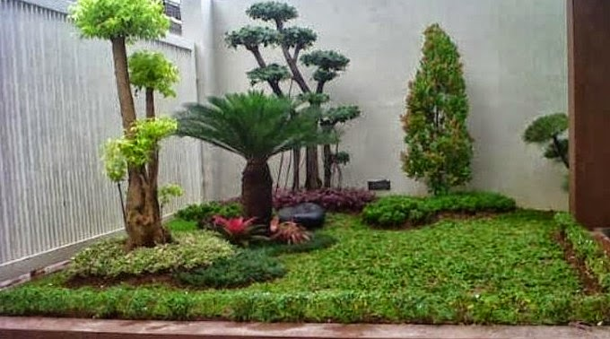 taman rumah minimalis type 36 yang unik dan menarik