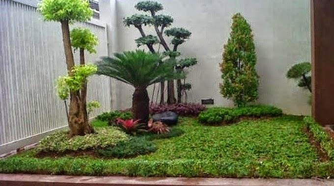 taman minimalis rumah type 36