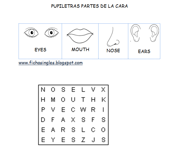 Partes del rostro en inglés para colorear - Imagui