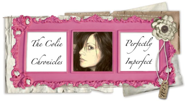 The Colie Chronicles ~ Perfectly Imperfect