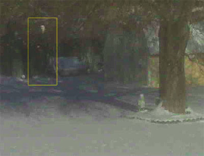 Real Ghost Photo: Backyard Phantom