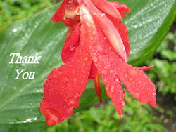 Thank You Card for Holiday Gifts Received