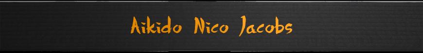 <center>Aikido Nico Jacobs</center>