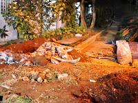 SP: ossada é encontrada em escola estadual de Araraquara