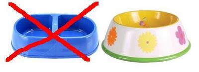 memilih mangkuk makanan kucing