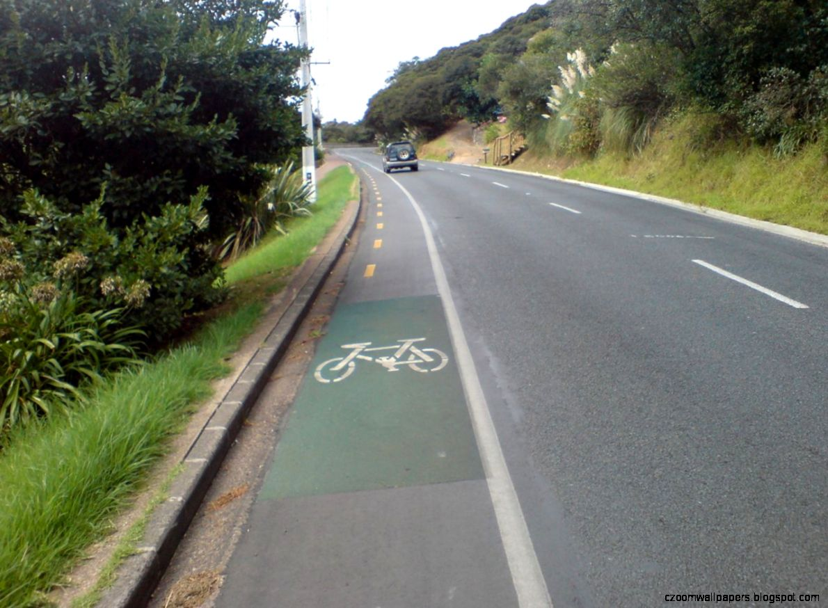 FileCycle Lane On Waiheke Island Road   Wikimedia Commons