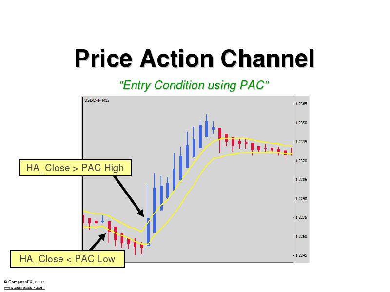 Asia options trading championship