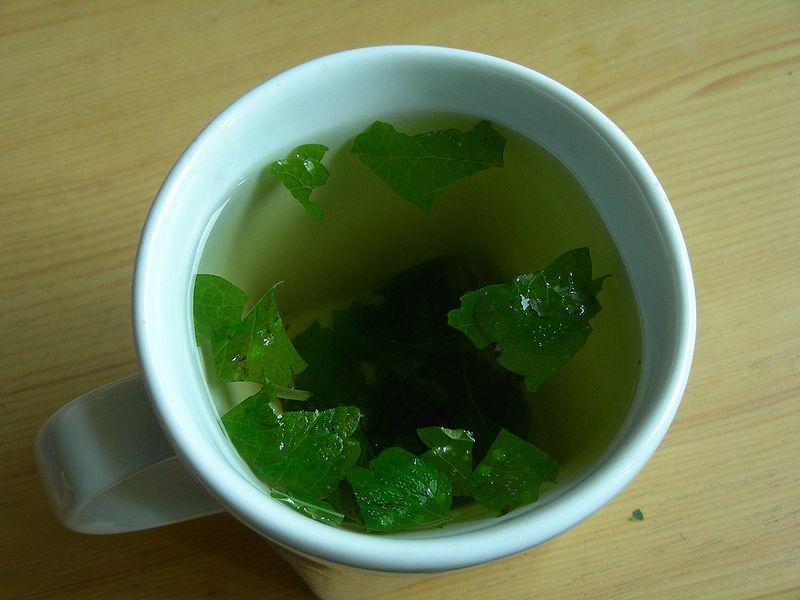 Remedios herbarios naturales para una mejor salud