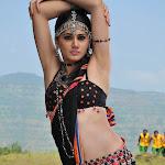 Tapasee Pannu Dance in Black Saree  Photo Set
