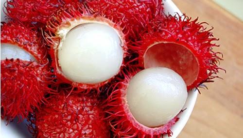 http://manfaatnyasehat.blogspot.com/2014/07/manfaat-buah-rambutan-untuk-kesehatan.html