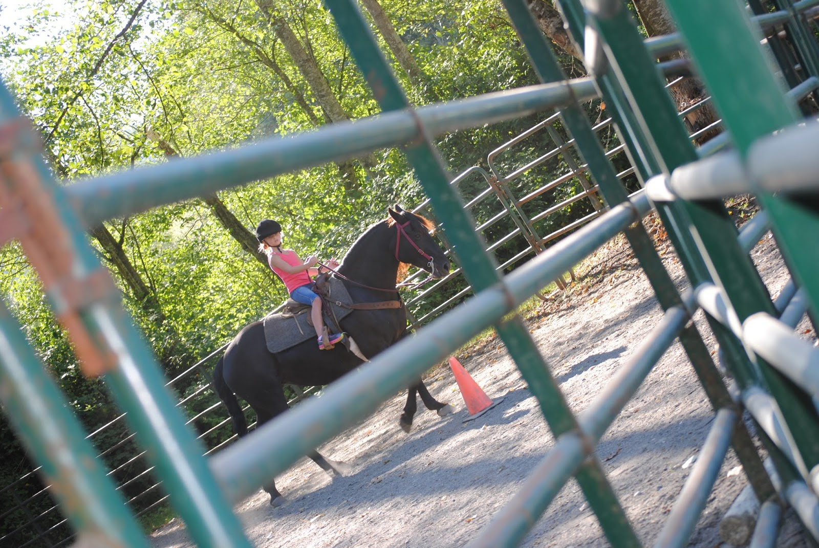 kelsey rylee langs horse and pony farm langs horse and pony farm