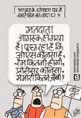 assembly elections 2013 cartoons, bjp cartoon, indian political cartoon, cartoons on politics, voter