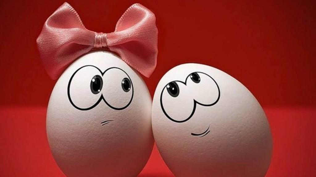 Pareja de huevos