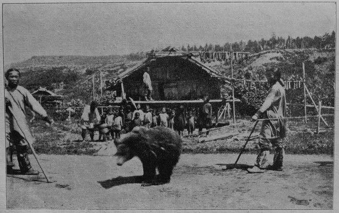 Η θυσία της αρκούδας