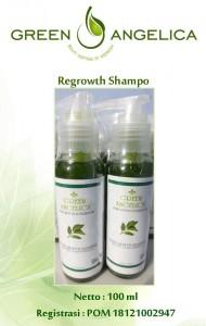 http://rambutmarem.blogspot.com/2013/09/green-angelica-regrowth-shampo.html