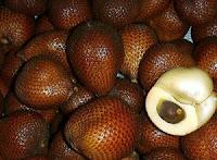 khasiat buah salak, manfaat buah salak, khasiat salak
