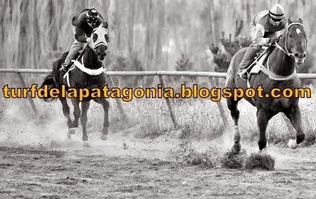 http://turfdelapatagonia.blogspot.com.ar/2014/05/2505-resultados-de-carreras-de-caballos.html