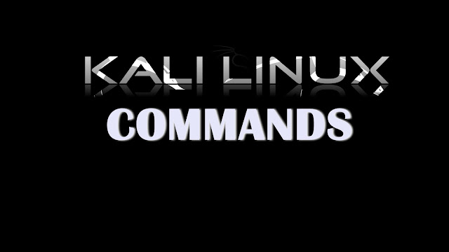 An Introduction to Linux Kali Commands