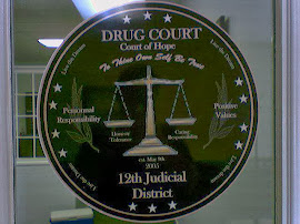 12th Judicial Drug Court Foundation