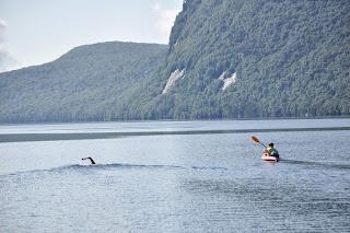 The Daily News Of Open Water Swimming Paula Yankauskas Is 2013