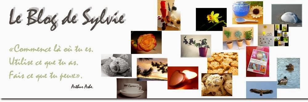 Le Blog de Sylvie