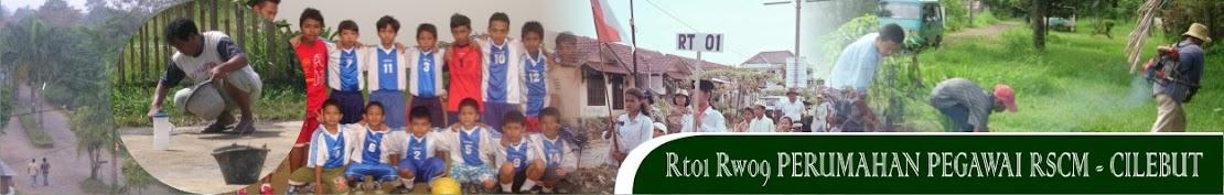 RT01 PERUMAHAN PEGAWAI RSCM