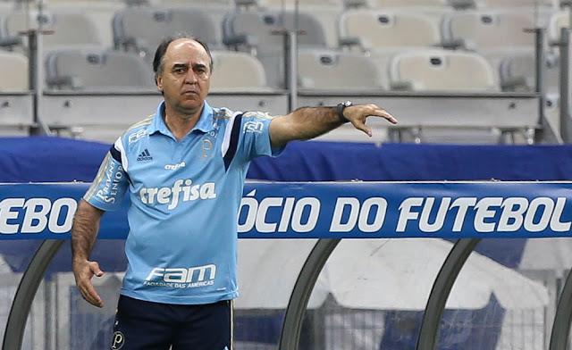 O técnico Marcelo Oliveira lamentou a segunda derrota seguida do Palmeiras (Foto: Cesar Greco / Fotoarena)