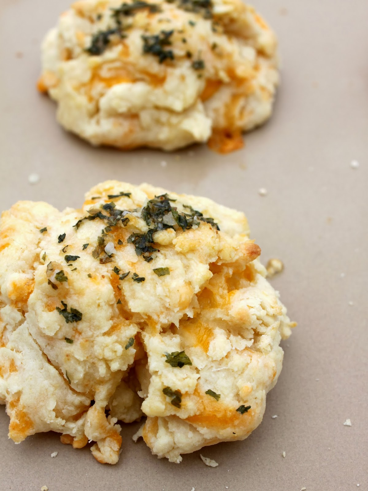 ... & Sycamore Trees: Bangin' Garlic Cheddar Biscuits (From Scratch