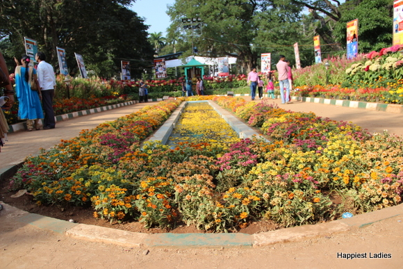 mysore dasara 2015 flower show17