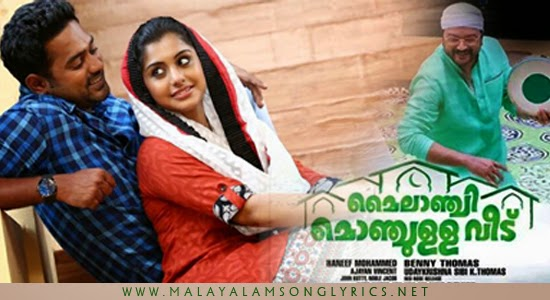 Thammil Thammil Song Lyrics - Mylanchi Monjulla Veedu Movie Song Lyrics