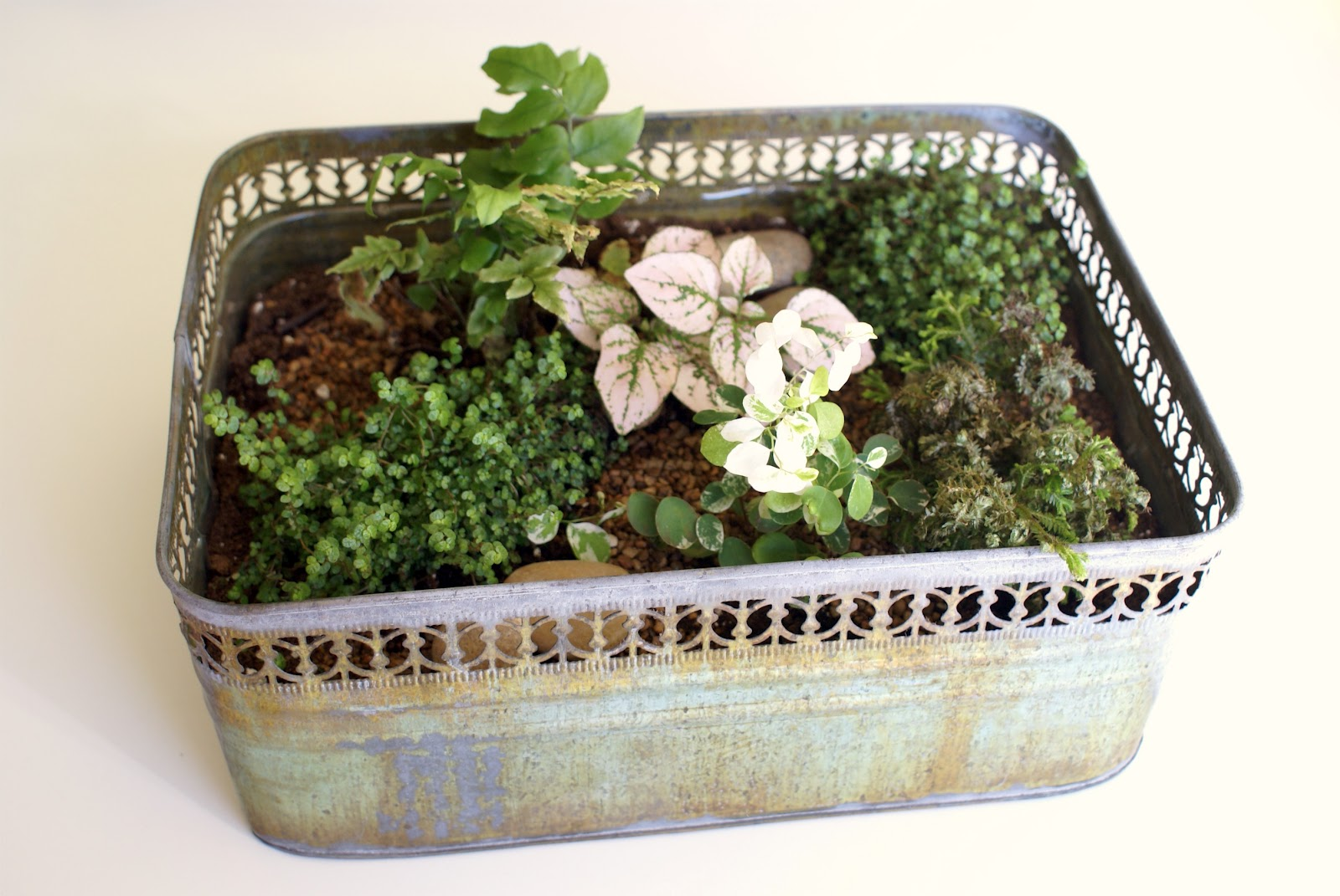 Pinterest Pick of the Week: Fairy Gardens