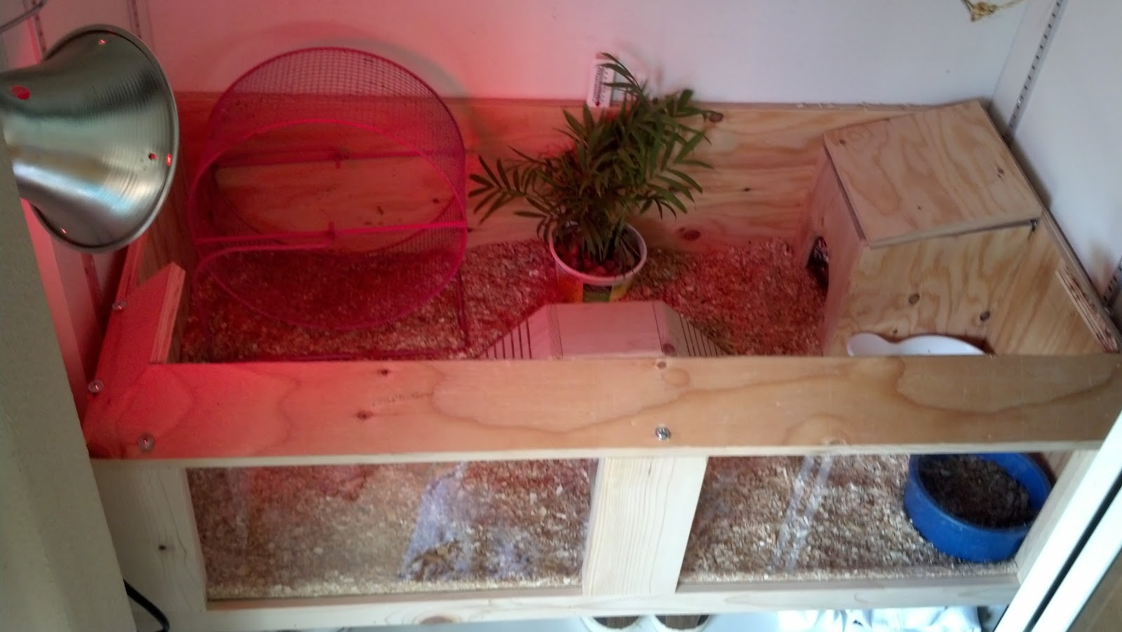 Hedgehog Enclosures http://hbcustomcages.blogspot.com/