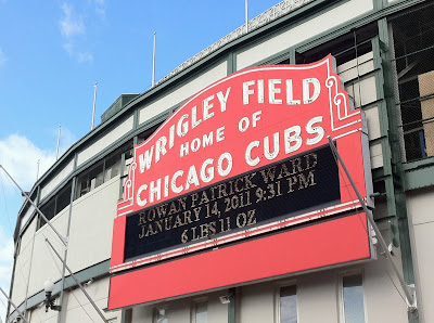 wrigley marquee birth
