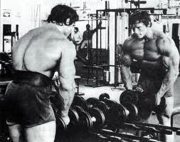 Arnold Golds Gym