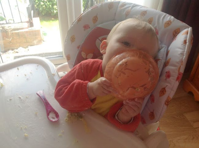 baby in highchair licking plate