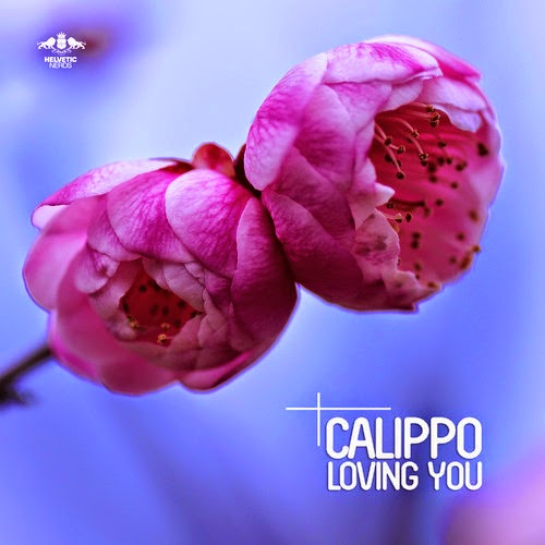 Calippo - Loving You EP