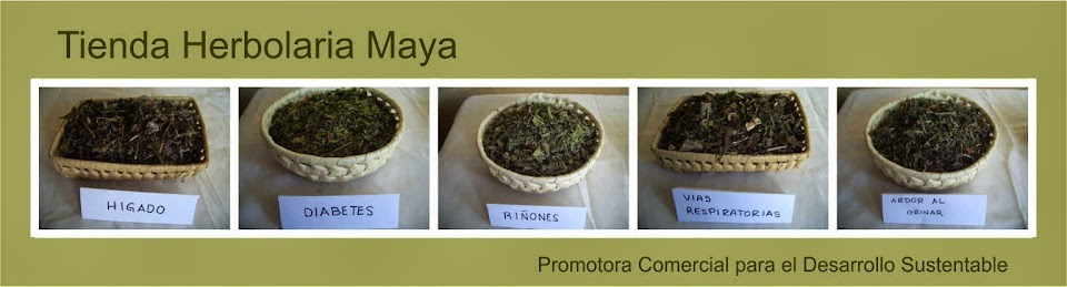 Tienda Herbolaria Maya